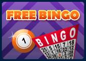 bingo liner promo free bingo games